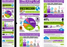 Carbonite Infographic Series