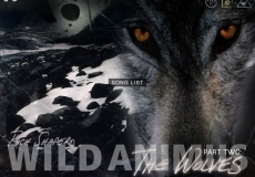 Wolves Music Home Page